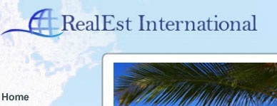 RealEstate International